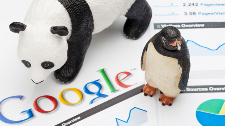 Google algorithm and your SEO
